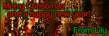 Merry Christmas and a Happy New Year banner made by Gracie.